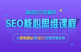 SEO实战技术核心课程网课