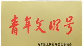 """中公教育团委获评2018年度海淀区""""青年文明号"""""""
