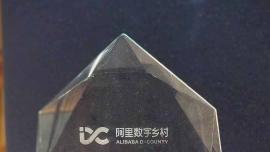 """中公教育荣获阿里巴巴数字乡村电商学院""""共向未来奖"""""""